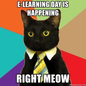 E-Learning meme with cat