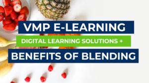 VMp elearning blog digital learning solutions blended learning